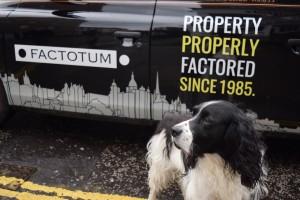 Factotum Taxi Sam