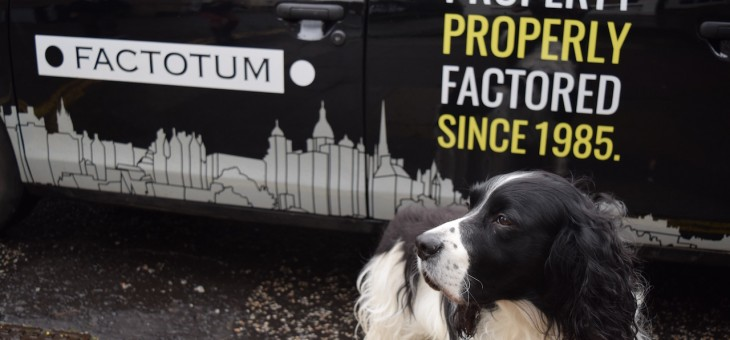 5 Unbeatable Dog Walks in Edinburgh (and why you need to try them)